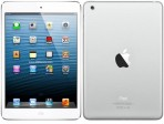 Apple Ipad mini wifi 32GB vit
